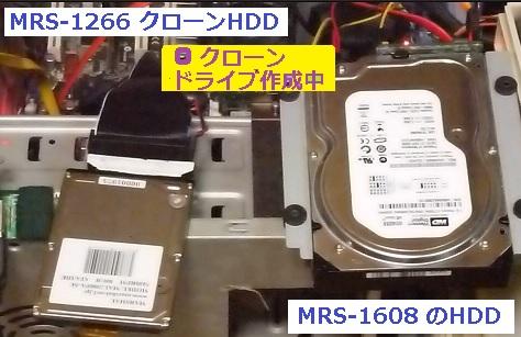 MRS1266 クローン作成.JPG