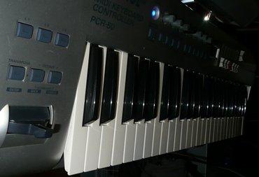 PCR-50(2).JPG