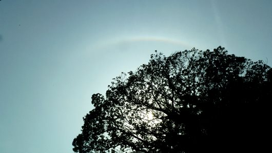 Umbrella of the sun to the rainbow=Sun halo.JPG